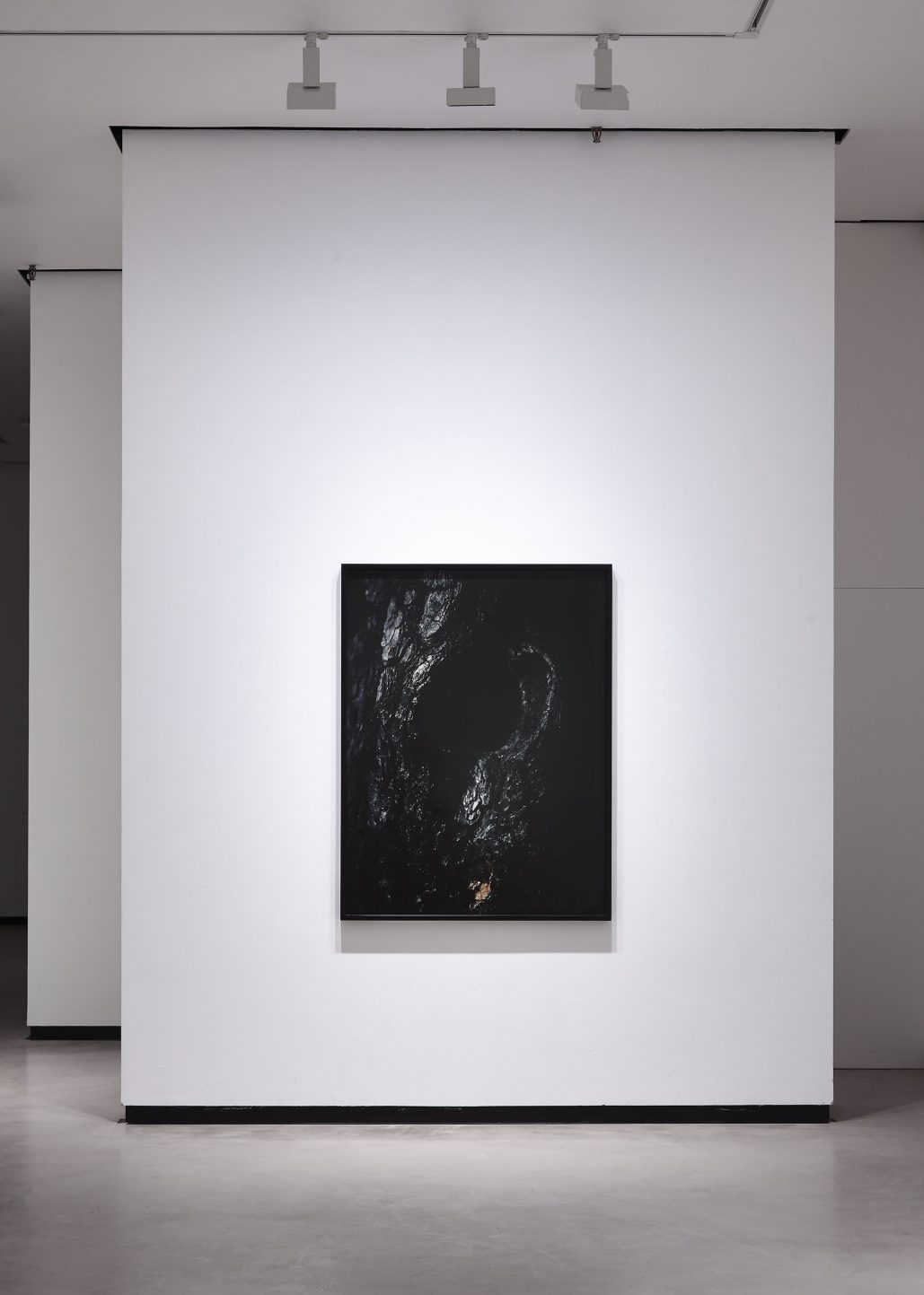 Axel Antas. installation view